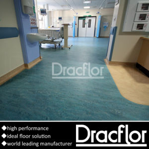 PVC Floor Carpet (F-2201) pictures & photos