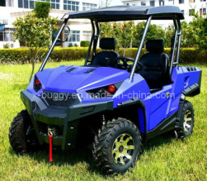 UTV 4x4 Side by Side pictures & photos