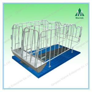 Pig Farm Equipment/Pig Crate/Hot Galvanizing Gestation Crate pictures & photos