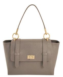 Charming Satchel Tote Bag Women Bag Leather Handbag (LDO-15184) pictures & photos