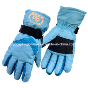 Ladies Wnter Glove, Ski Glove pictures & photos