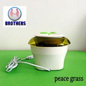 Green Grass DC 12V Room and Car Air Purifier pictures & photos