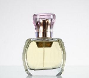 Men′s Perfume Fragrance, Perfume Fragrance Oil