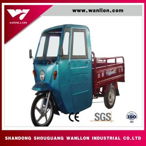 800W Rainning Proof Cabin Tricycle, Three Wheel Motorcycle pictures & photos