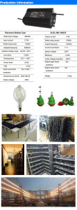 High Efficiency Electronic Ballast 1000W pictures & photos