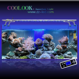 LED Aquarium Light, Coral Reef Light (SI4SRR120)