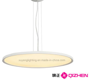 LED Pendant Light for Projects pictures & photos