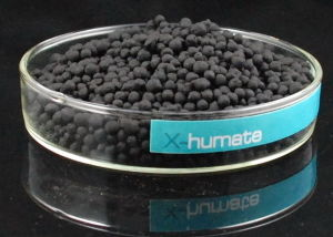 X-Humate Brand Product-High Organic Humic Acid From Leonardite pictures & photos