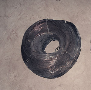 Electro Galvanized Iron Wire pictures & photos