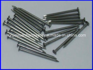 Galvanized Smooth Shank Common Nails pictures & photos