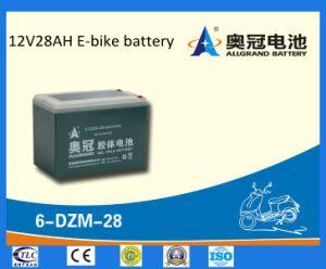 6-Dzm-28 Battery 12V28ah Gel Battery for E-Bike/Scooter