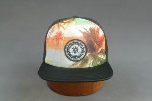 Sponge Front Mesh Back Snapback Hat pictures & photos