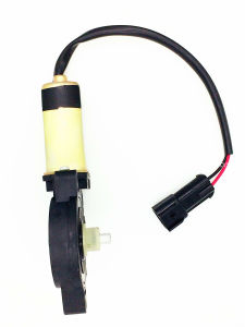 DC Electric Window Lift Motor pictures & photos