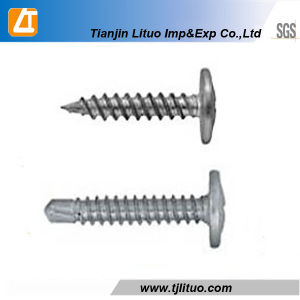 Tornillo Autoperforante/Autorroscante De Cabeza Wafer Head Screws pictures & photos