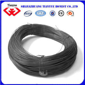 Black Annealded Iron Wire (TYB-0026) pictures & photos