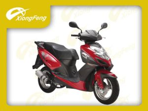 50cc Scooter, Xf50qt-10 (EagleKing) , Gas Scooter pictures & photos