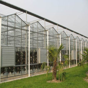 Glass Greenhouse for Vegetable and Flowers Growing pictures & photos