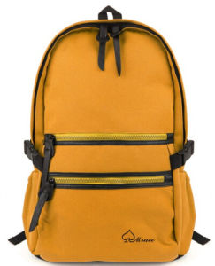 Hiking Travelling Backpack Laptop School Bag (SB6375C) pictures & photos