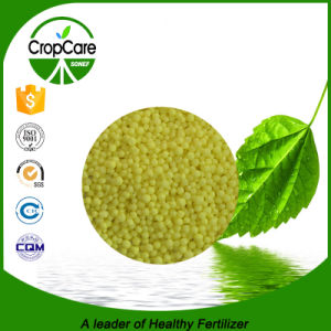 Sulfur Coated Urea Humic Acid Nitrogen with High Quality pictures & photos