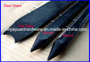 Square Steel Nail Stake pictures & photos