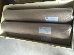 Plain Dutch Weave/Twill Dutch Weave/Reverse Dutch Weave Stainless Steel Filter Wire Mesh pictures & photos