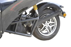 EEC Tricycle Motorcycle ATV with Hydraulic Brake (KD 250MD2) pictures & photos