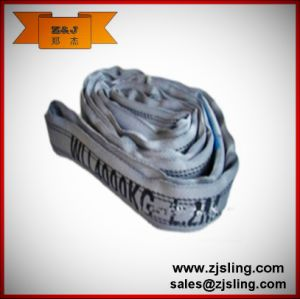 8t Polyester Endless Round Soft Webbing Sling (customized) pictures & photos