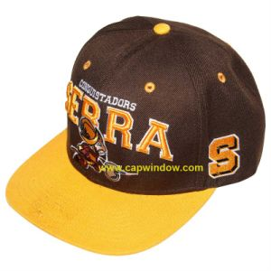 2016 New Design Snapback Hats, Baseball Caps (cw-0795) pictures & photos