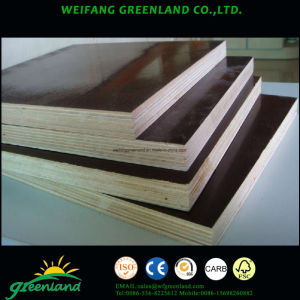 15mm One Time Hot Press Quality Fillm Faced Plywood with Brown Film and Hardwood Core pictures & photos