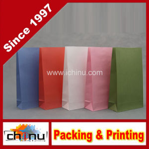 Colored Printed Kraft Paper Bag (2113) pictures & photos