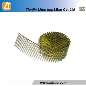 Good Quality Coil Nails/Coil Roofing Nails/Wire Coil Nails pictures & photos