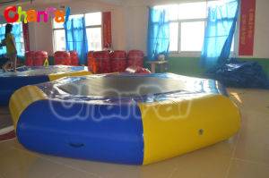 Wholesale Factory Inflatable Trampoline From China pictures & photos