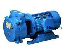 Chemical Industry Vacuum Heat Treatment Water Ring Pump pictures & photos