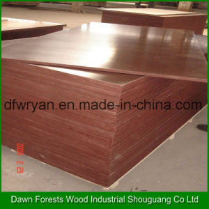 Brown Film Formwork Plywood for Construction Use pictures & photos
