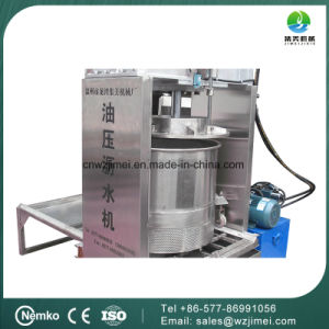 Hot Selling Orange Carrot Fruit Juice Machine for Oil Press Type pictures & photos