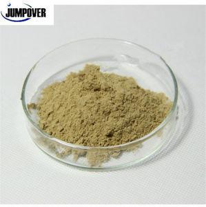 High Purity Organic Fertilizer Seaweed Powder Fish Feed Poultry Feed