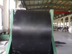 Nylon Conveyor Belt with Light Weight pictures & photos
