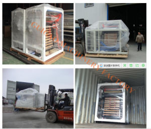 Taiwan Quality Two Layer Film Blown Machine pictures & photos