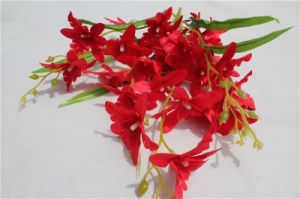 Real Touch Artificial Flower Red Latex Orchid pictures & photos