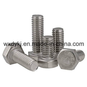 DIN 933 Stainless Steel Hexagon Head Hex Thread Bolt Nut pictures & photos