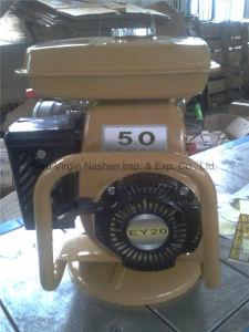 Electric Vibrators Petrol Robin Concrete Vibrator pictures & photos