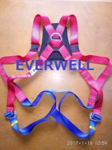 Fall Protection Safety Harness with One-Point Fixed Mode (EW0316H) pictures & photos