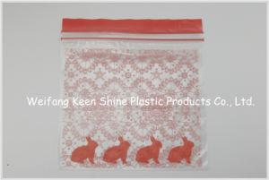 High Quality Food Grade Zip Lock Plastic Bag pictures & photos