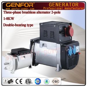 6kVA Double-Bearing Self-Excited 2-Pole Single Phase or Three Phase Alternator with Itay Linz Type pictures & photos