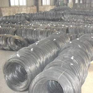 High Carbon Steel 77b 82b 6.0~16.0mm Steel Wire Rod Price pictures & photos