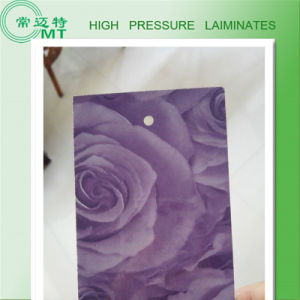 Countertops Formica/HPL High Pressure Laminate pictures & photos