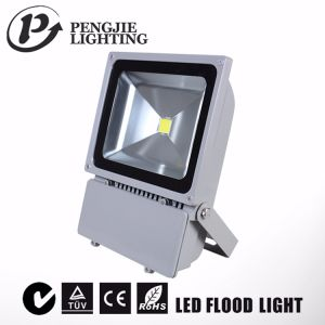 COB IP65 100W LED Flood Light with CE RoHS (PJ1080) pictures & photos