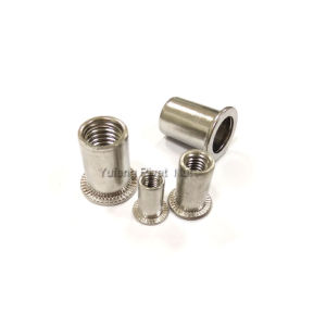 Stainless Steel 304/316 British and American Flat Head Rivet Nut pictures & photos