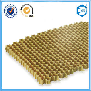 Beecore Paper Honeycomb Core Used for The Clean Room and Partition Wall pictures & photos