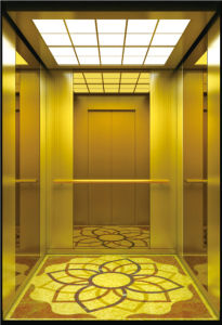 Golden Color Passenger Lift for Restaurant pictures & photos